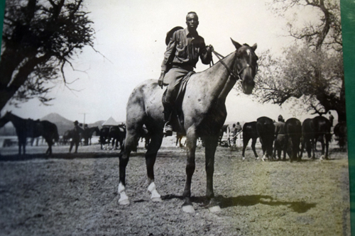 Buffalo soldier essay